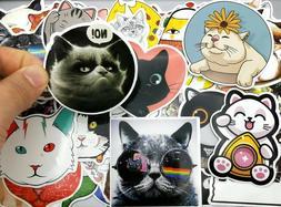 11 CAT Stickers~ Cool Glasses Black White Grey KITTEN Vinyl