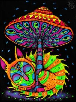 "2"" Psychedelic Cat Meow Kitten Neon Hippie Sky Colorful Ar"