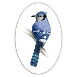 Blue Jay Car Laptop Phone Vinyl Sticker  - SELECT SIZE