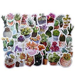 50PCS Cute Cactus and Succulent Plants Stickers Cute Scrapbo
