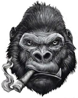 GORILLA SMOKING CIGAR BUMPER STICKER TOOLBOX STICKER LAPTOP