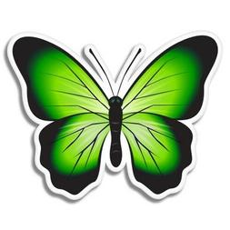 Green Butterfly Colorful Car Laptop Phone Vinyl Sticker  - S