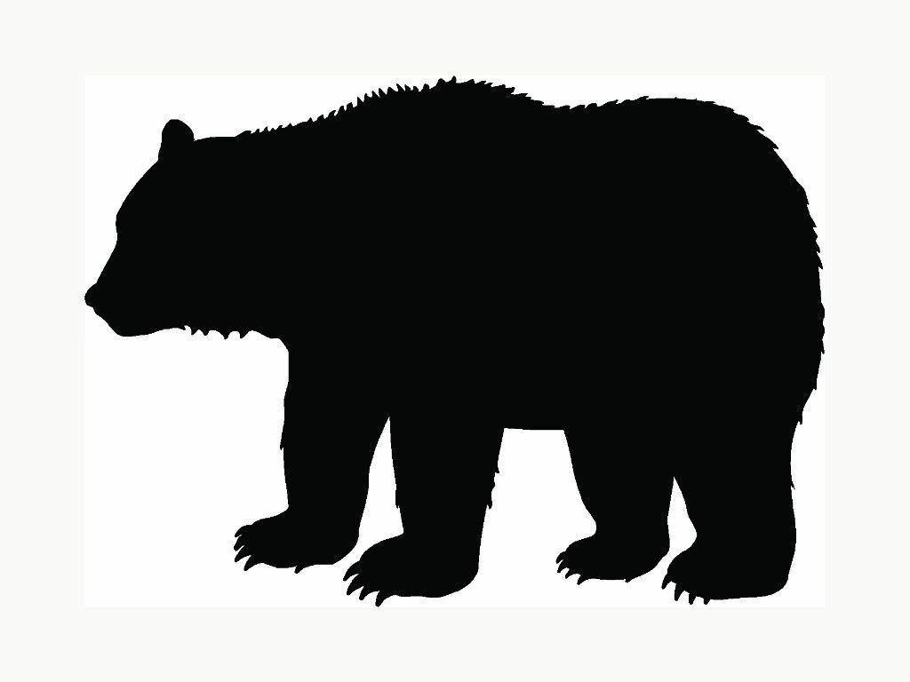 bear vinyl decal sticker grizzly black outdoors