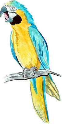 Blue Yellow Macaw Parrot Vinyl Decal Sticker - Car Truck SUV