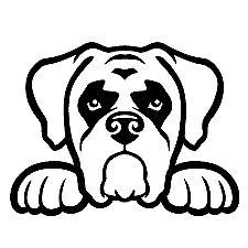 Peeking Boxer Dog Decal Vinyl Sticker Laptop Car Window CHOO