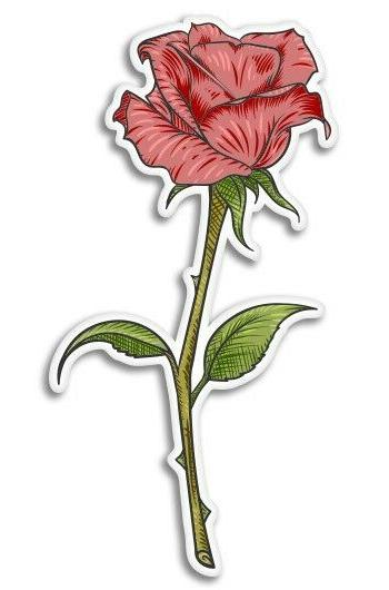 rose beautiful car laptop phone vinyl sticker