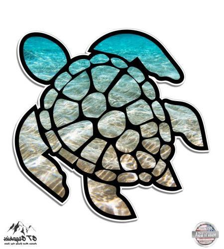 sea turtle beach ocean