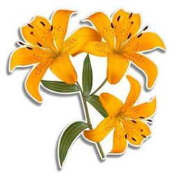 Lily Flowers Car Laptop Phone Vinyl Sticker  - SELECT SIZE