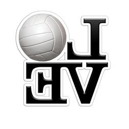 LOVE Volleyball Color Vinyl Sports Car Laptop Sticker - 6""