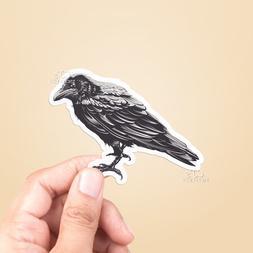 Raven Vinyl Sticker - Laptop Sticker / Water Bottle Sticker